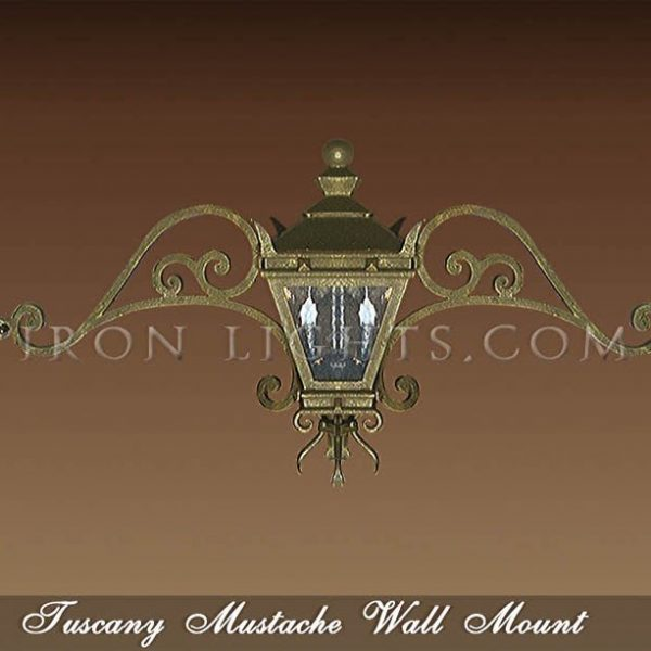 Wall mount light fixtures